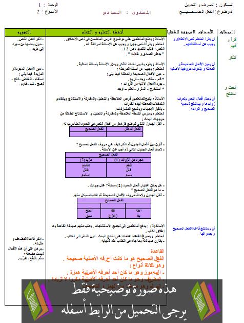 جذاذات التراكيب والصرف والتمارين لكتابي في اللغة العربية – السادس ابتدائي
