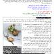 درس علوم الحياة والأرض: الهندسة الوراثية (مبادئها وتقنياتها) - الأولى باكالوريا علوم رياضية