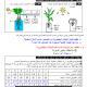 درس علوم الحياة والأرض: آليات امتصاص الماء والأملاح المعدنية عند النباتات اليخضورية - الأولى باكالوريا علوم تجريبية
