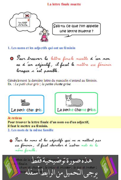 درس مادة الفرنسية La lettre finale muette  – السادس إبتدائي