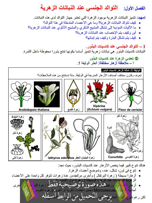 درس التوالد الجنسي عند النباتات الزهرية جذع مشترك علمي وتكنولوجي (علوم الحياة والأرض)